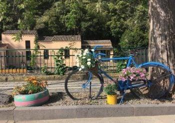 Bagni di sole e medici di quartiere, la nuova vita dei pensionati in Sardegna Corriere.it